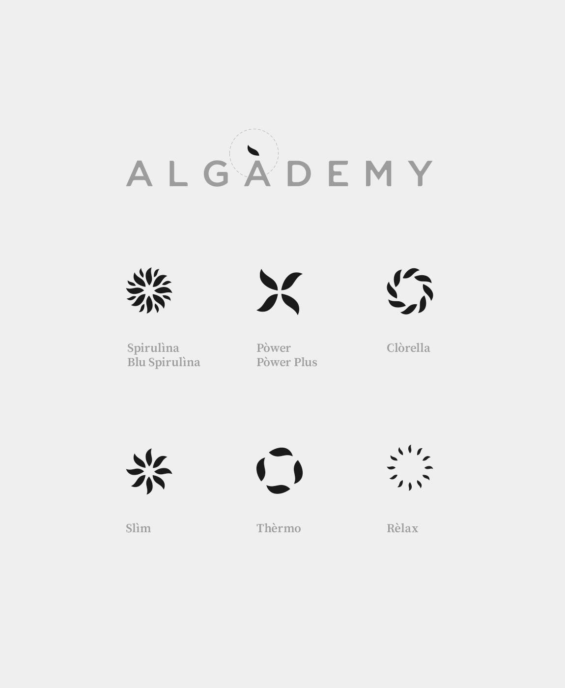 Algademy_12